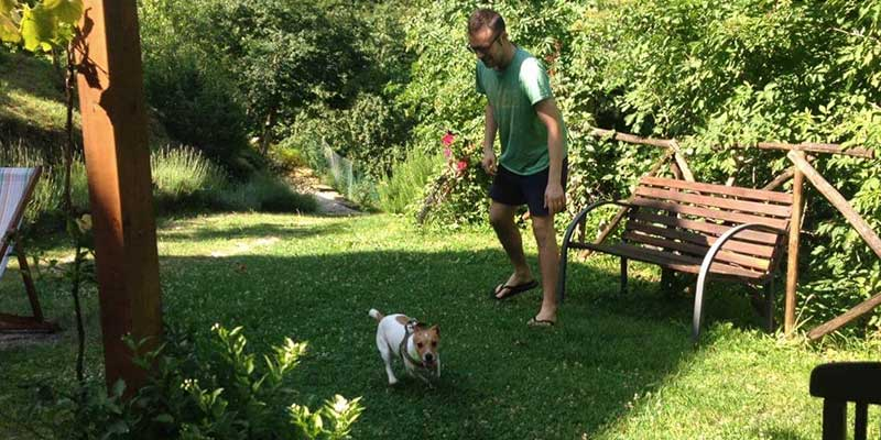 bed-and-breakfast-dog-friendly